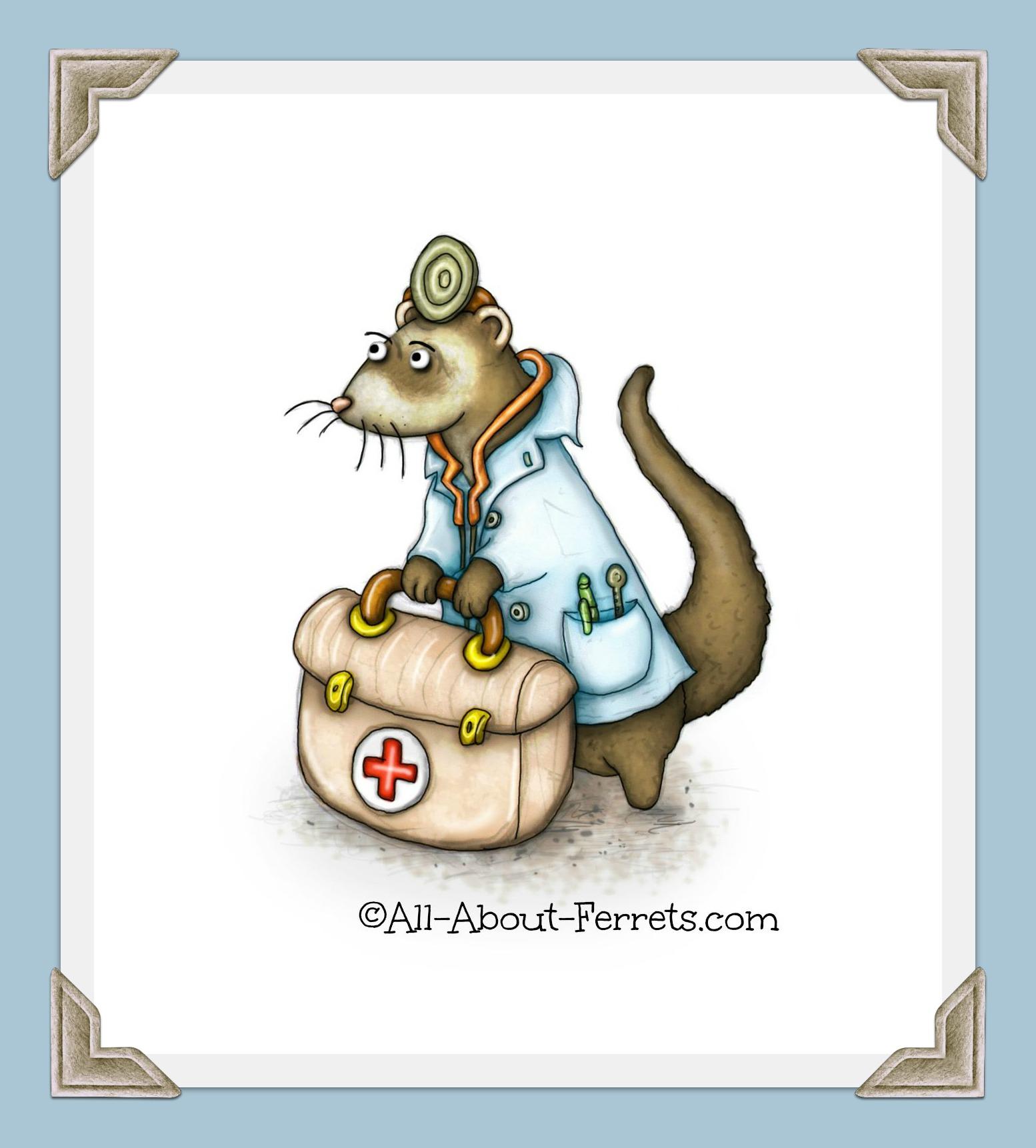 Medical Information for Ferrets